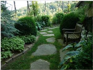 A sideyard in Our Akitt Project