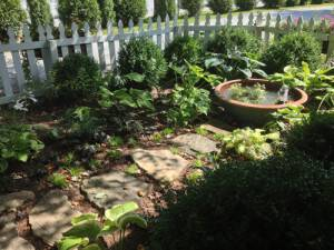 Take a Roadtrip to Cashiers NC – And See Our Garden!