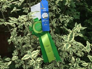 An Award for our North Carolina Garden Design offices….