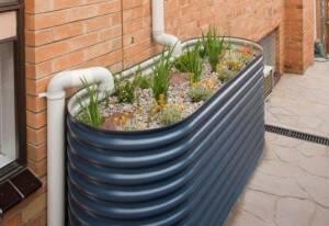 Build a Rain Garden for a Sustainable Landscape