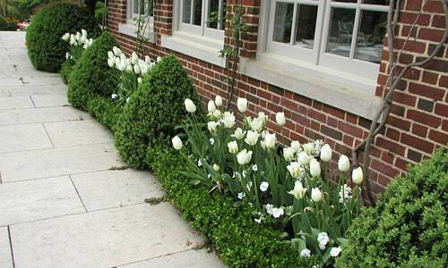 improving your property and landscape