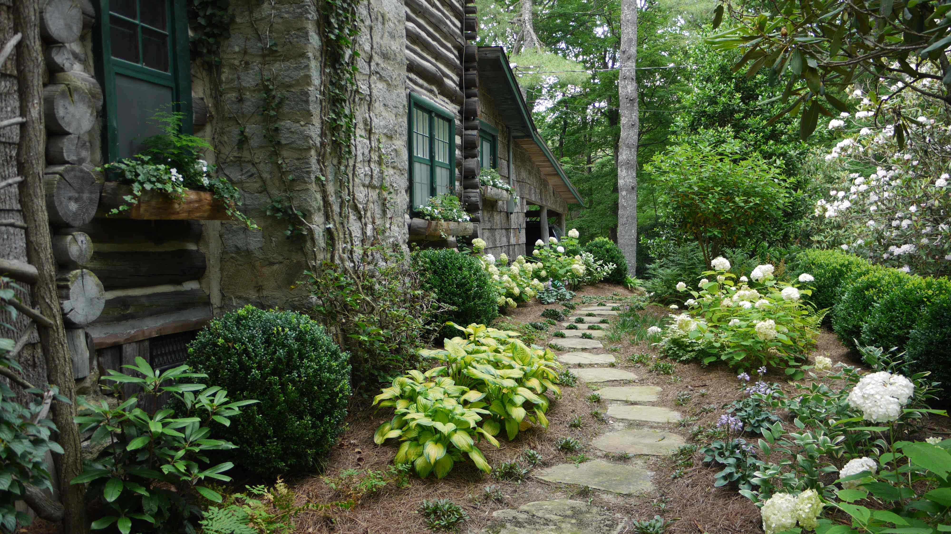 Cashiers and highlands are having a great hydrangea year for Garden designs with hydrangeas