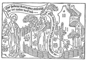 The History of  Early English Gardens
