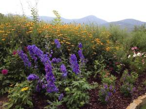 North Carolina Garden Center – Hosting Series of Garden Salons in Cashiers NC