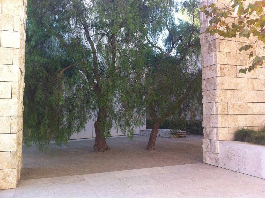 Getty tree place