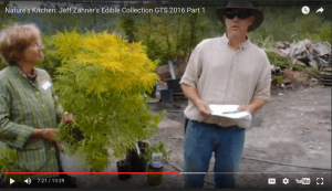 Jeff Zahner Part 1 shrubs edible 5-27-16