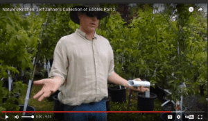 Jeff Zahner Part 2 trees 5-27-16