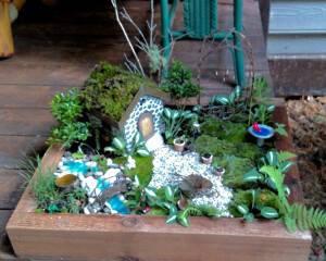 Karla Sidey's miniature garden 2016