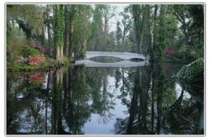 Magnolia Plantation and Garden