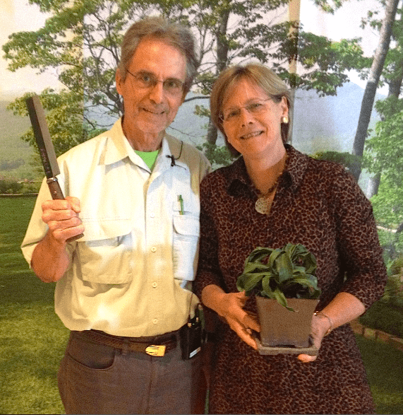 Ozzie Johnson, Chelsea INternational plant of hte year breeder, brandishing a Japanese  pruning knife