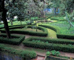 Landscape Design Inspiration from Near and Far