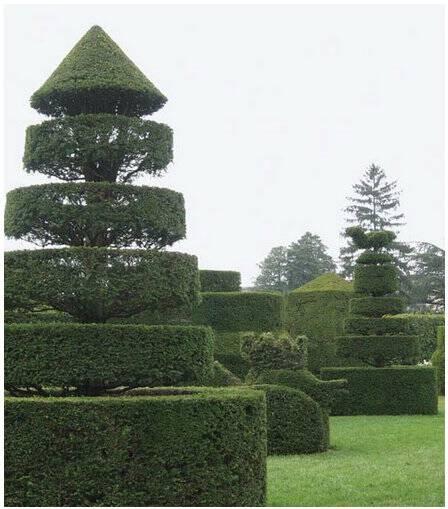 Four Visual Tools of Landscape Design   Dargan.com
