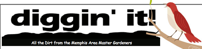Memphis landscape architects
