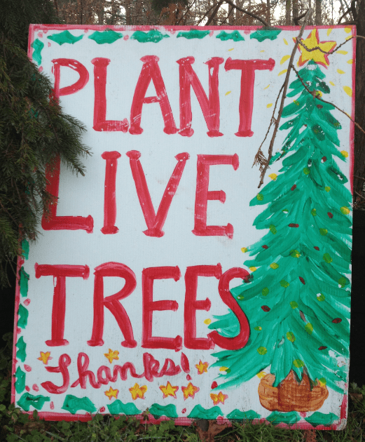 plant_live_trees_chattooga_gardens