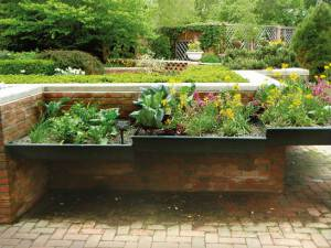 A Video Invitation: A Sustainable Garden Workshop on April 24 and May 15